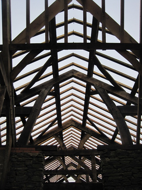 Common Rafters at Castle Ring Oak