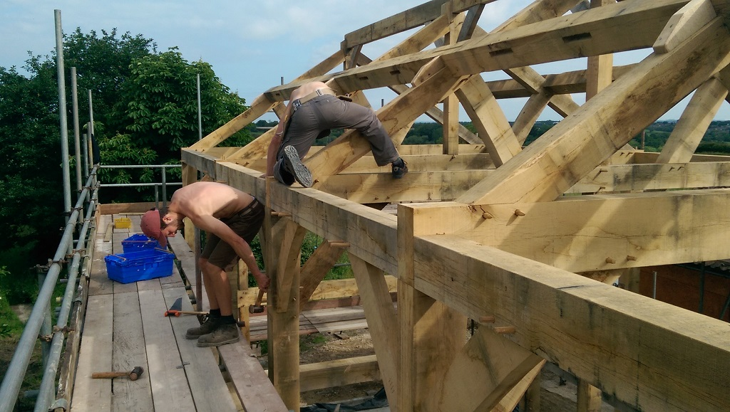 timber frame pegs